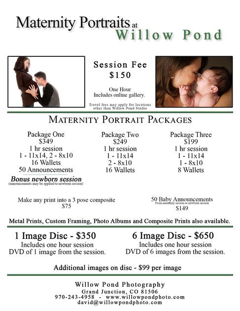 Maternity Portraits Willow Pond w Digital copy